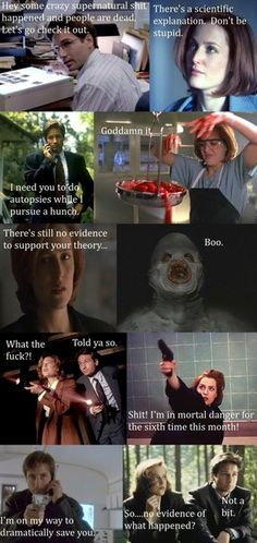 X-Files. Sums up their nonsensical ways.