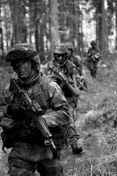 Band of lethal brothers-Swedish army