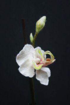 beautiful felted orchid