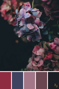 Newest Photos ZJ Colour Palette 449 - - Кольори Colour Pallette, Color Combos, Color Schemes Colour Palettes, Wedding Colour Schemes, Palette Art, Color Trends, Bedroom Paint Colors, Color Balance, Design Seeds