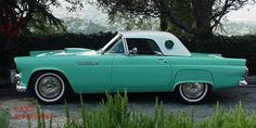 55' Turquoise T-Bird....pure joy!