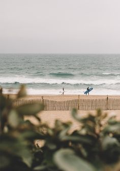 An afternoon at the beach Hossegor The spotted dog Beach Aesthetic, Summer Aesthetic, Summer Feeling, Summer Vibes, Photo Deco, Beach Day, Scenery, Adventure, Photography