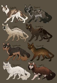 DeviantArt is the world's largest online social community for artists and art enthusiasts, allowing people to connect through the creation and sharing of art. Warrior Cats Clans, Warrior Cat Memes, Warrior Cats Fan Art, Warrior Cats Art, Cat Drawing Tutorial, Cat Character, Character Ideas, Cat Skin, Cat Anatomy