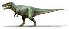 """Name:  Daspletosaurus (Greek for """"frightful lizard""""); pronounced dah-SPLEE-toe-SORE-us Habitat:  Swamps of North America Historical Period:  Late Cretaceous (75-70 million years ago) Size and Weight:  About 30 feet long and 3 tons Diet:  Herbivorous dinosaurs Distinguishing Characteristics:  Massive head with numerous teeth; stunted arms"""