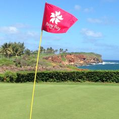Poipu Bay...Kauai golf...beautiful course.