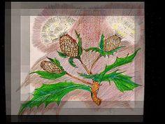 Scottish Thistle drawing by cathib9 on Etsy, $35.00