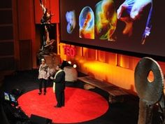 Tyrone Hayes + Penelope Jagessar Chaffer: The toxic baby. Great Ted talk about how the chemicals we ingest can be transferred to an unborn baby. These include chemicals in our water to BPA in plastic. Baby Penelope, Birth Doula, Flipped Classroom, Ted Talks, Business Planning, Kids Learning, Youtube, Parenting, Children