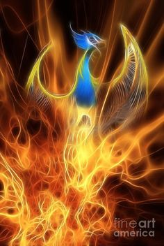 Do you know the concept of Phoenix? Phoenix is a bird that belongs to the world of fiction. It is assumed to have the properties of resurrection.wouldn't this be perfect from foot to calf? Phoenix Images, Phoenix Art, Phoenix Rising, Phoenix Quotes, Phoenix Dragon, Rise From The Ashes, John Edwards, Fire Image, Canvas Prints