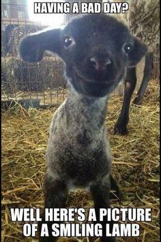Smile it's free! :) xx