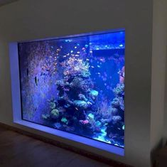 Aquarium Design, Aquarium Mural, Coral Aquarium, Saltwater Aquarium Fish, Saltwater Tank, Marine Aquarium, Salt Water Fish, Salt And Water, Fish Tank Wall