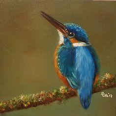 Kingfisher, ijsvogel