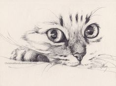 Immagine di drawing, cat, and art