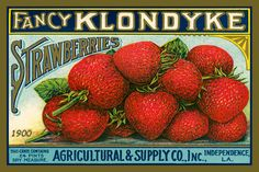 Klondike Strawberries Canning Label 1900. Quilt Block printed on cotton. Ready to sew.  Single 4x6 block $4.95. Set of 4 blocks with pattern $17.95.