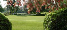 Lake Region Yacht  Country Club in Winter Haven, Florida #CentralFL #golf #Polk #whfl