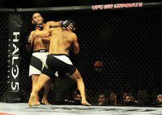 MOMENTO VERDADEIRO: 'UFC São Paulo': Vitor Belfort atropela Henderson ...