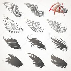 арт декоративные птичьи крылья: 17 тыс изображений найдено в Яндекс.Картинках