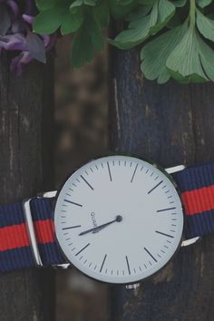 Free download of this photo: https://www.pexels.com/photo/blue-and-red-strap-silver-round-analog-watch-beside-purple-and-green-leaf-plant-157992/ #wood #flowers #wristwatch