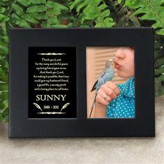 'Golden Memories' Personalized Pet Bird Memorial Picture Frame | EtchedInMyHeart.com | Satin Black Finish - $19.95