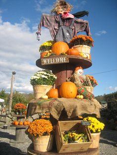 pumpkin festival activities - Google Search