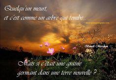 texte rencontre amoureuse skyrock Villeneuve-d'Ascq