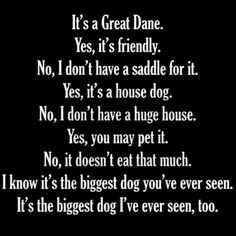 Great Danes. Have to own one to know what this is all about