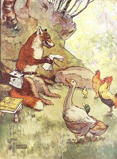 Little Chicken Kluk By Frank Adams