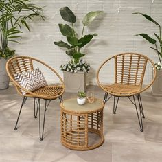 Bungalow Rose Coffelt Outdoor Modern Boho 3 Piece Rattan Seating Group with Cushions Frame Finish: Light Brown Table Dimensions, Outdoor Seating, Club Chairs, Wood And Metal, Wicker, Diy Home Decor, Bedroom Decor, Hairpin Legs, 3 Piece
