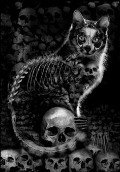 Skull Cat Gothic Print Steampunk kitten feline Skelanimal Tattoo halloween Fine Art Canvas Print Kutna Hora horror Vena Kava on Etsy, Tatto Skull, Skull Cat, Human Skull, Dark Fantasy, Fantasy Art, Burg Tattoo, Tattoo Gato, Cat Skeleton, Cat Art