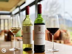 In celebration of Heritage Day and Braai Day, visit the Leopard's Leap Tasting Room this week and get 6 bottles of the 2019 Leopard's Leap Pinotage for only R360 or 6 bottles of 2020 Leopard's Leap Chenin Blanc for only R300! Please note that Covid-19 regulations prevent sales for off-consumption on public holidays and weekends. You can still taste, but orders received on these days, will be delivered in the next week. White Wine, Red Wine, Chenin Blanc, Public Holidays, Tasting Room, Alcoholic Drinks, Bottles, Celebration, Note