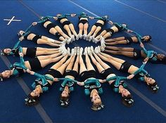 great white shark cheerleading team | ... about Cheer Sport Sharks on Pinterest | Sharks, Cheer and Long sleeve