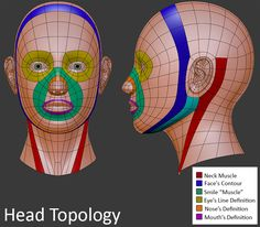 3D Head Topology ★ || CHARACTER DESIGN REFERENCES | キャラクターデザイン  • Find more…