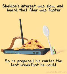 Sheldon the Tiny Dinosaur who Thinks he's a Turtle : Photo