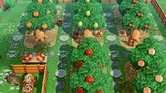 Animal Crossing 3ds, Animal Crossing Wild World, Animal Crossing Villagers, Fruit Tree Garden, Garden Trees, Fruit Trees, Animal Games, My Animal, Orchard Design