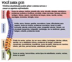 Áreas da Coluna Vertebral e sua relação com o corpo.