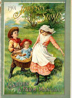 Johnson and Stokes Garden and Farm Manual-1901