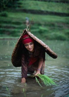 Woman villager collecting river grasses, in Pokhara, Nepal / Steve McCurry