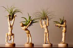 Mini Man AirPlanter W/ Living Air Plant- Wooden Decor Unique Air Planter- Wood Planter- Air Plant Holder- Plant Stand- Plant display - ~Modern Man AirPlanter~ Looking for something special for your mum on Mothers Day? Introducing the - Small Succulents, Succulent Pots, Small Plants, Live Plants, Unique Plants, Pots For Plants, Indoor Planters, Wood Planters, Plants Indoor