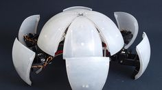 This Ingenious Robot Rolls, Unfolds, Then Scampers    MAKING IT  WHY SHOULD ROBOTS WALK WHEN THEY CAN ROLL?