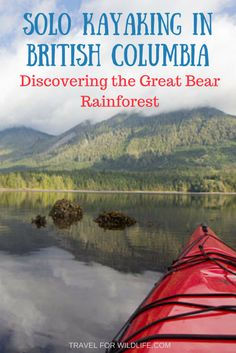 Kayaking solo in British Columbia is one of my favorite experiences from our travels. Paddle around little coves where bears forage, listen to the call of the eagles, and be spied on by wolves.
