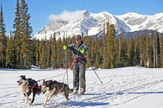 The air is crisp, snow is blanketing the ground, and we're deep in the heart of skijoring season, so you… are you brave enough get out there with your snow dogs;-) If you can't take your fur buddy with you then book an adventure for him @ Rover.com Save $20 with coupon code:SAVE20TODAY20 @www.rover.com/sit/4pennyb
