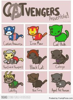 avengers funnies | CATvengers Assemble! CAT version of The Avengers - Humor, Funny