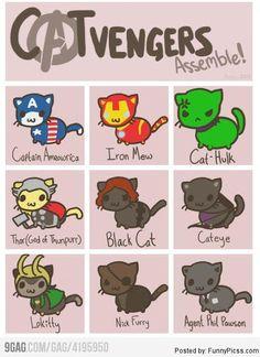 avengers funnies | CATvengers Assemble! CAT version of The Avengers - Humor, Funny