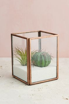 5.97 SALE PRICE! Sleek and chic, this Glass Terrarium Display Case with Copper edges can't be beat. Build a tiny terrarium or mini natural landscape in this ...