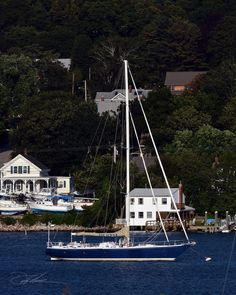 ... Sailboat Yacht, Sailing Regatta, Island Park, Sail Away, Tall Ships, Catamaran, Travel Light, Portsmouth, Rhode Island