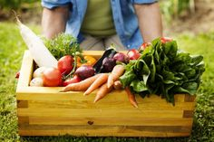 Are you interested in growing vegetables in your garden? Growing vegetables in the vegetable garden is much easier than you imagine. Growing Vegetables, Fruits And Vegetables, Veggies, Ingo Froböse, Application Utile, Legume Bio, Decoration Entree, Salud Natural, Nutrition