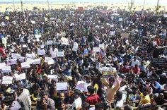 Jallikattu: Protesters swell, Modi dashes hopes of ordinance  http://www.mirchi24x7.com/jallikattu-protesters-swell-modi-dashes-hopes-of-ordinance/