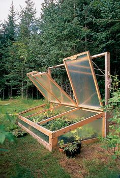 Simple project to protect tender plants in winter
