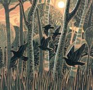 through the trees - annie soudain