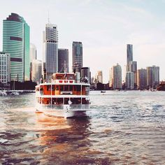 Welcome to Brisbane! We follow events and destinations around Brisbane City.  Tag #ThisIsBrisbane or Tag @Brisbane to give us permission to share Brisbane City, Sunshine State, San Francisco Skyline, Something To Do, New York Skyline, Beautiful Places, Places To Visit, Destinations, Tours