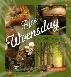 Fijne Woensdag Good Morning, In This Moment, Day, Gifs, Autumn, Photos, Buen Dia, Fall, Bonjour